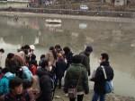 奈良市猿沢の池の池干し。小学生が参加する生物調査をしていました。