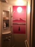 シャワールームの壁画。銭湯の壁画?と驚きました。実は移築前の外国からのお客様が描いたのだとか。